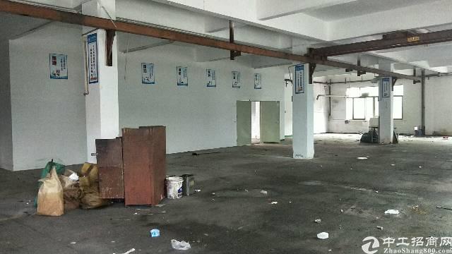 沙井新沙路大型工业园一楼500平方厂房出租-图4