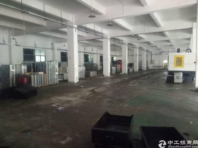 平湖新出一楼1550平标准厂房公摊小面积实在-图5