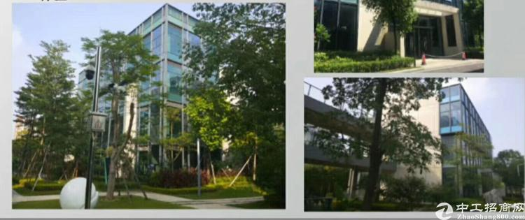 松山湖独栋别墅式写字楼360平~750平,可做注册公司办公楼