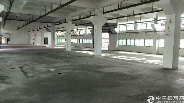 沙井南浦路大型工业园一楼6米高1800平方厂房出租