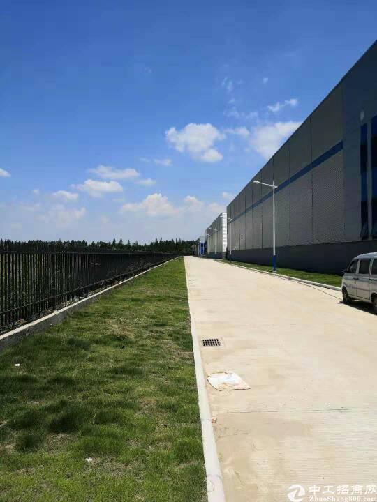 东西湖物流园10000平米钢结构库,可分租手续齐全。-图3
