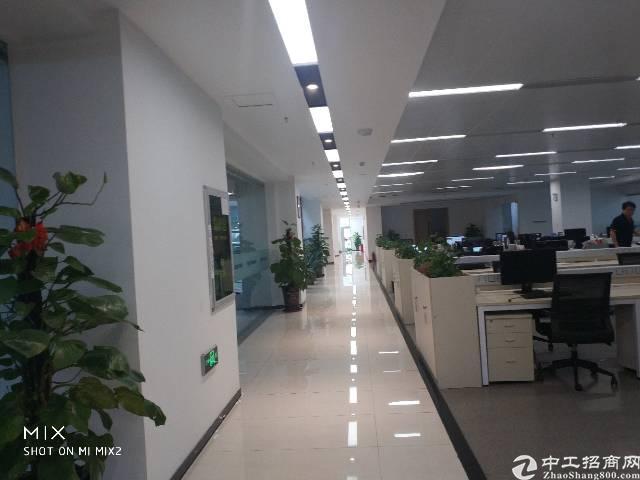 龙华新区大浪行政中心附近新出标准厂房3500平方豪华装修