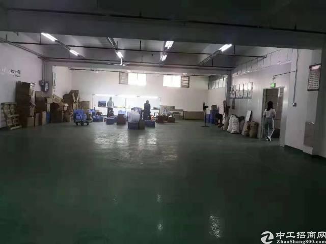 沙井107国道边新出楼上800平带装修厂房-图2
