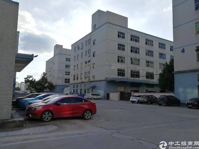 新出楼上2600平方豪华装修厂房出租(可分租)