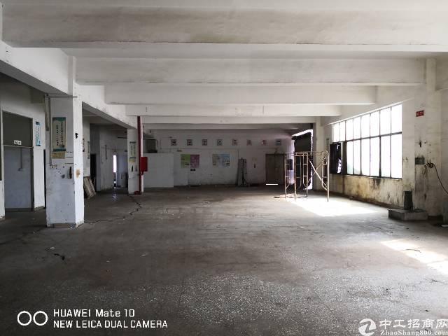 石岩水田高速口零距离厂房1500㎡接受200㎡起租