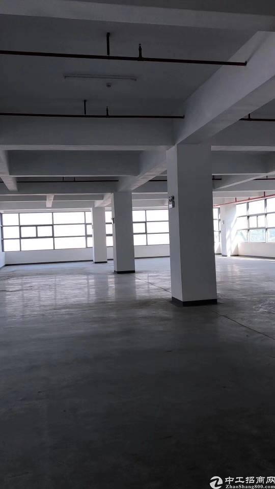 山厦大望工业区新出楼上带装修厂房出租