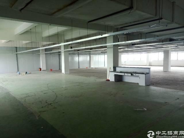 深圳石岩塘头大型成熟工业园-图5