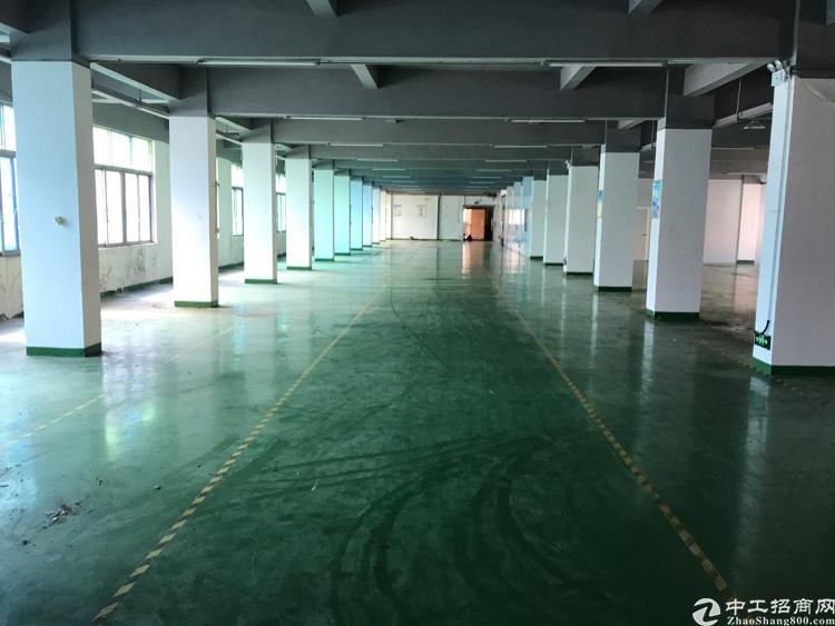 平湖富民标准工业厂房出租-图2