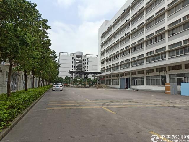 石岩石龙仔新出楼上原房东红本带装修厂房2500平米招租