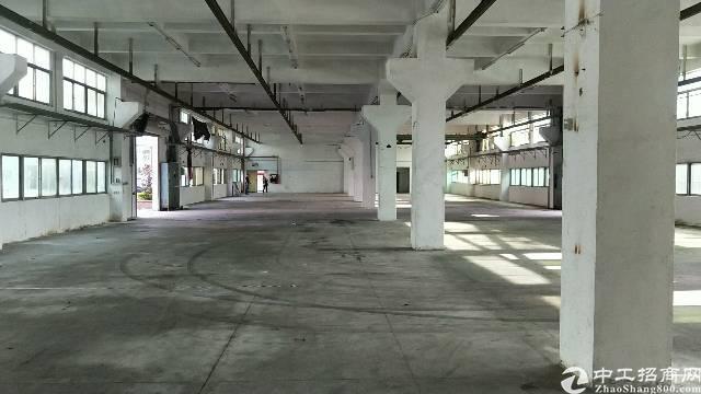 沙井南浦路大型工业园一楼6米高1800平方厂房出租-图3