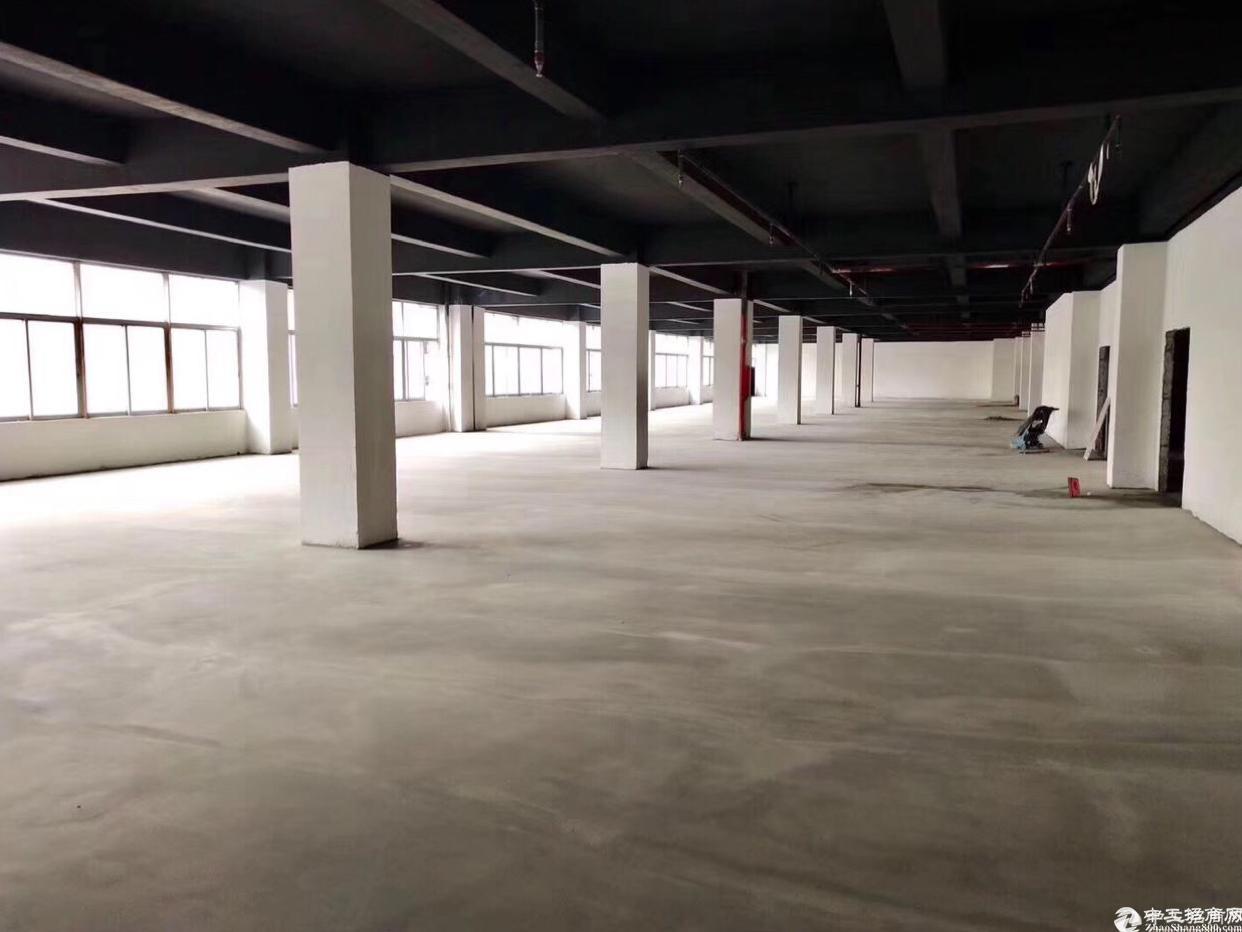 坂田1000平红本带消防喷淋卸货平台5吨货梯厂房招租可分租