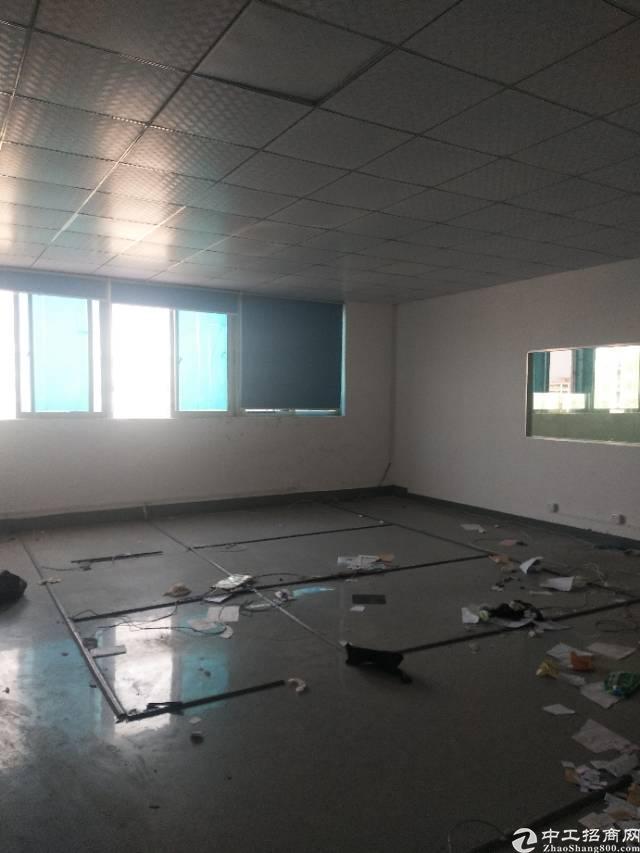 沙井107国道边新出楼上1300平米一整层厂房出租-图2