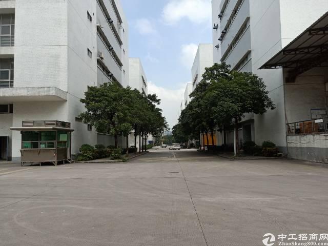 深圳石岩塘头大型成熟工业园