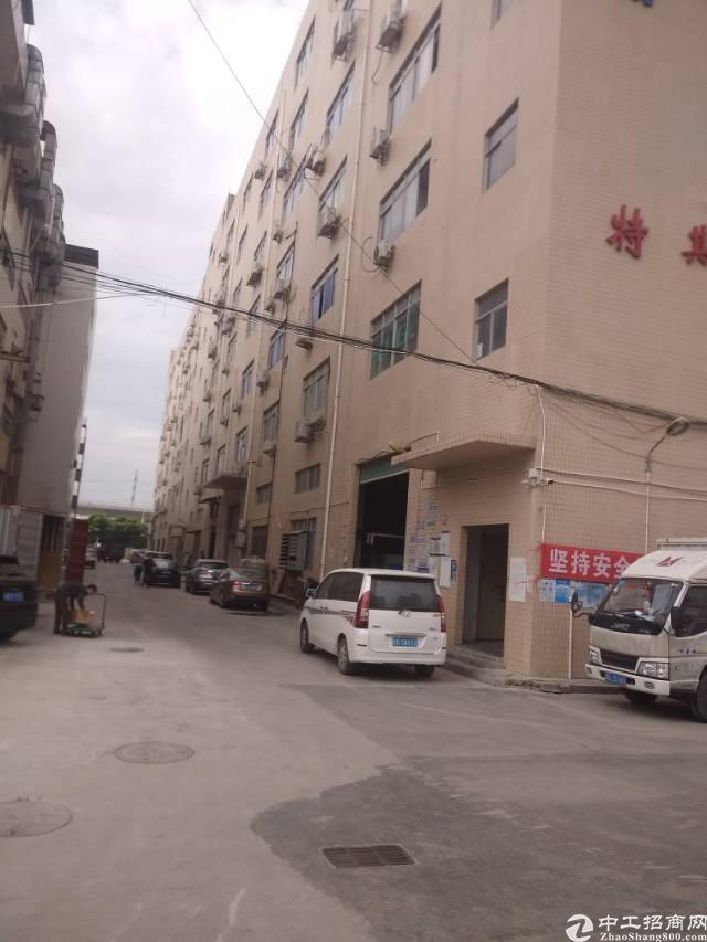 沙井西环路边出租厂房1300平方重工业厂房-图5