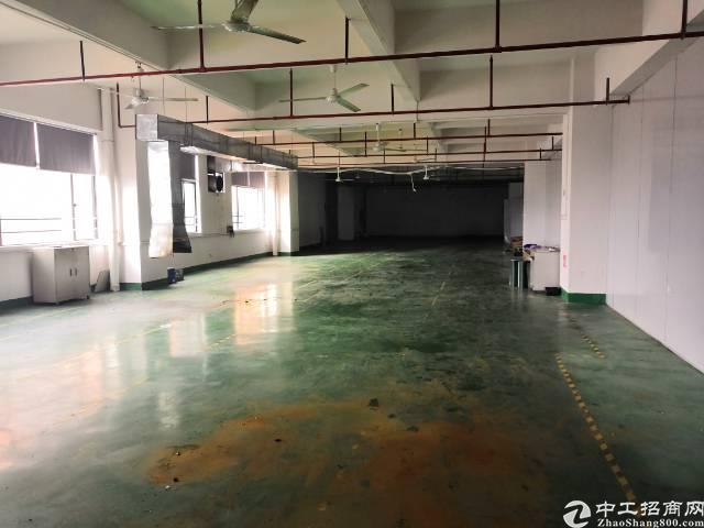 沙井后亭地铁站口附近新出楼上2400平带豪华装修厂房-图2