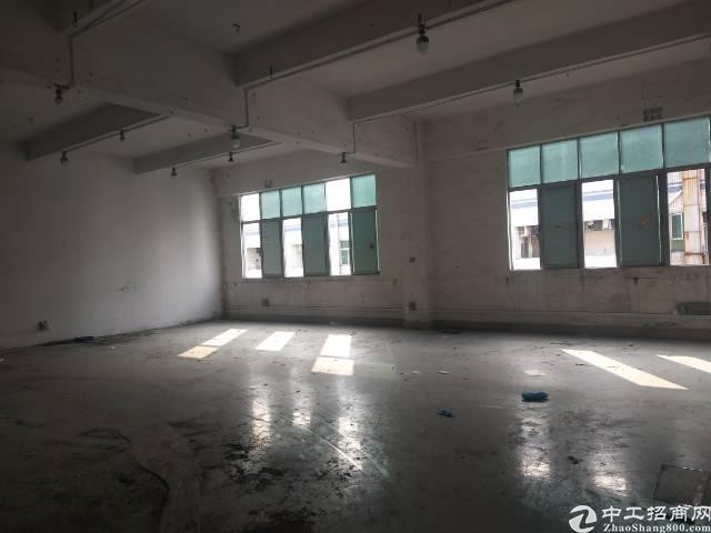 沙井107国道边新出楼上1300平米一整层厂房出租-图4