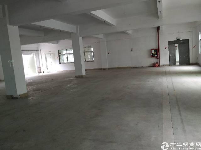 宝安石岩文韬工业区3楼厂房830出租,面积实在,-图4