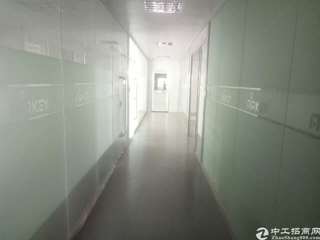 沙井黄埔独院两层2000平 原房东 可分租 合同5年 过消防-图4