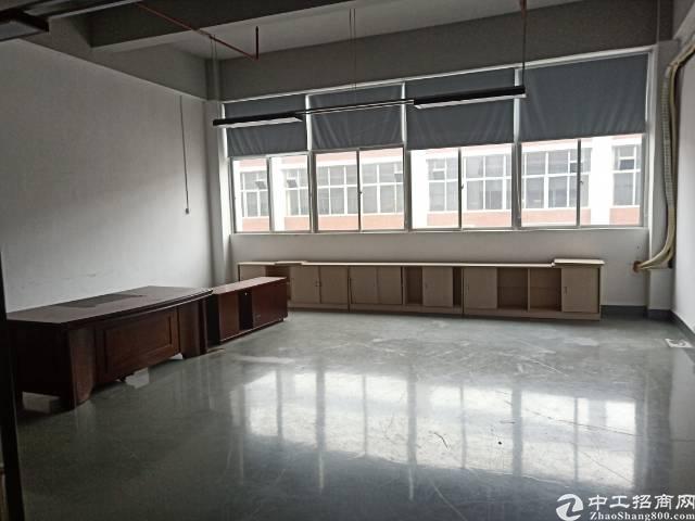 深圳石岩石龙仔大型成熟工业园