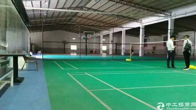 坂田新出层高8米适合篮球馆运动馆仓储物流场地4000平-图7