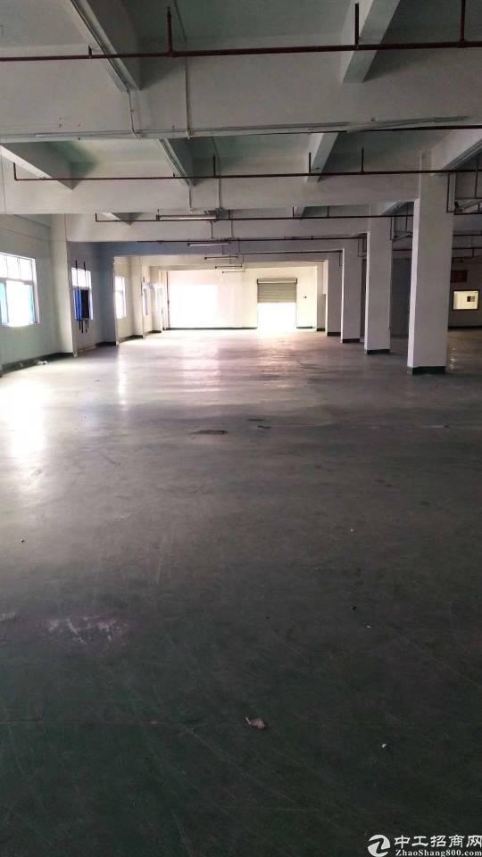 石碣镇刘屋村新出大型工业园厂房
