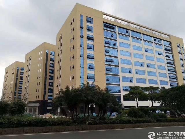 全新标准厂房8元每平米全城招租