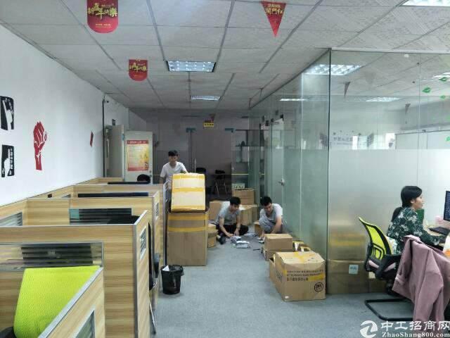 民治地铁口电商园新出精装修办公室500平(可分租,不要转让)图片3