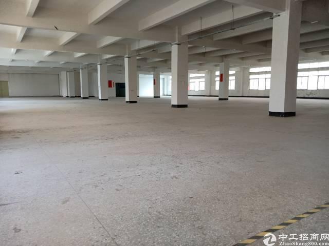 坪山坑梓红本厂房13500平米出租