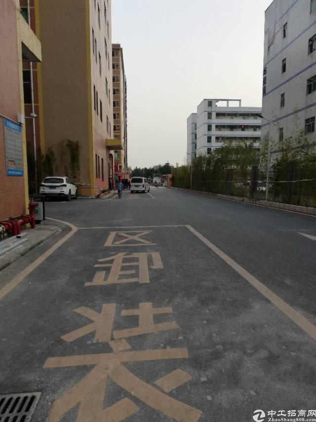 福永新出楼上精装修厂房300平 交通便利,园区大,
