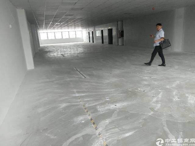 公明新出楼上带豪华装修厂房1550平