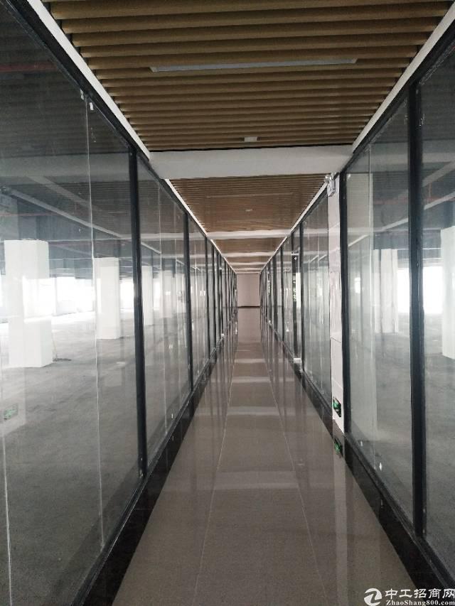 南山西丽大园工业区2000平豪华精装修写字楼招租大小可分
