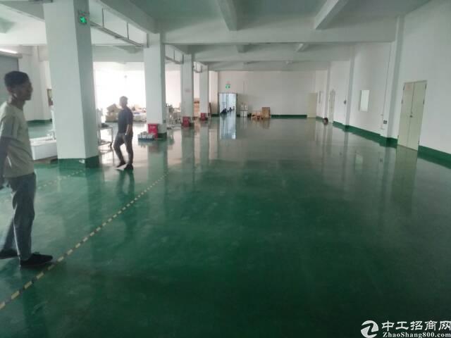 沙井大王山新出楼上2600平方带精装修无转让费