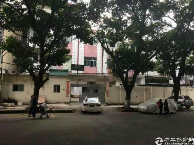 茶山镇原房东经典小型独院2000平方宿舍500平方