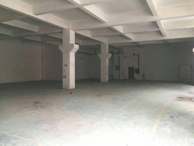 光明新区公明楼村公常路边新出一楼650标准牛角5.5米高厂房