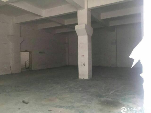 光明新区公明楼村新出一楼标准带牛角700平方厂房出租