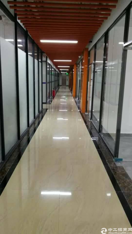 龙岗横岗六约500平方精装修写字楼 大气前台