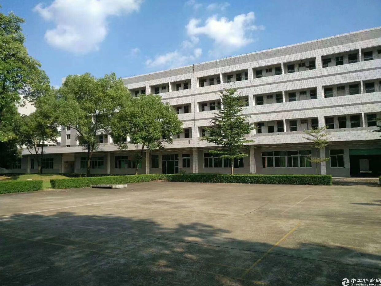 房东花园式独门独院厂房6000平方招租