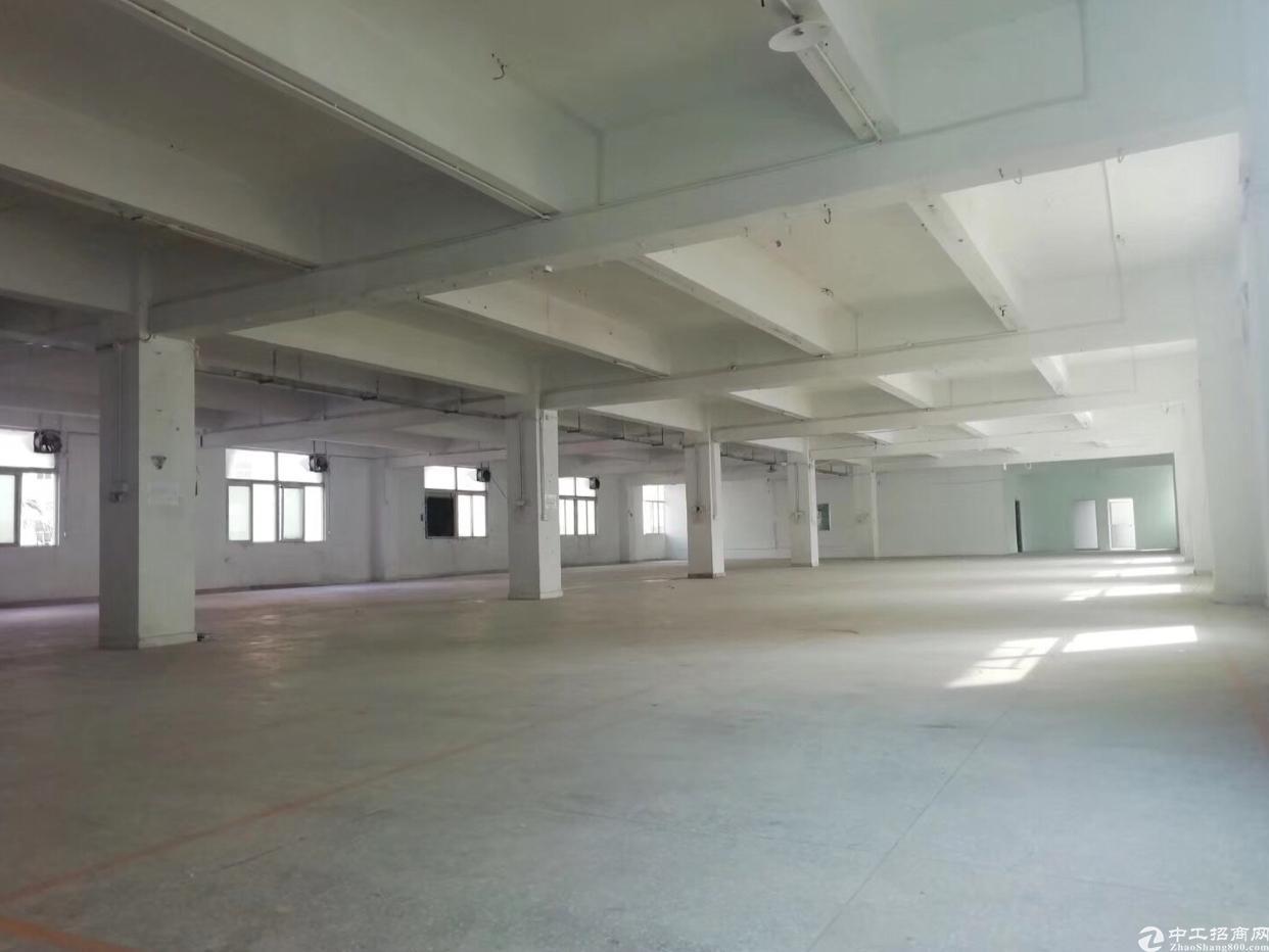 龙岗龙西清水路边新出原房东2楼带装修860平标准厂房