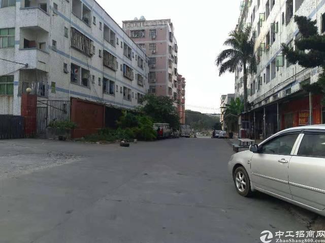龙岗龙东工业区独院标准厂房二楼精装修整层1200平招租