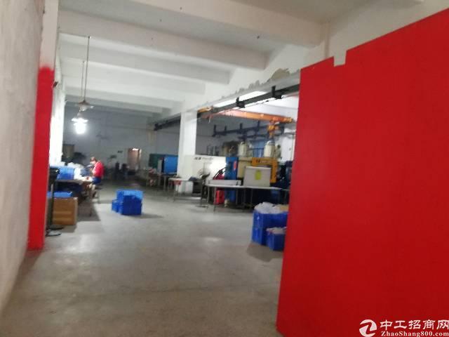 茶山镇卢屋标准厂房一楼500平方出租