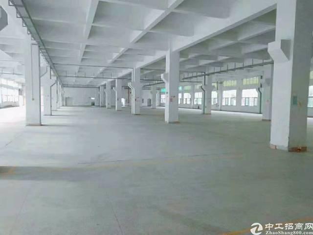 新塘镇标准厂房一楼2560平方出租