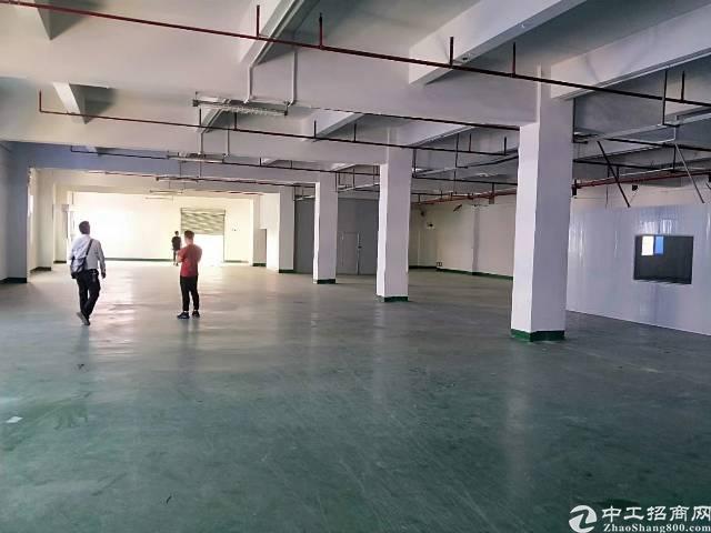 石碣新出标准厂房二楼1000平方出租
