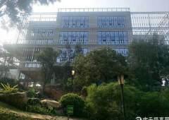 南城科教中心130平起办公楼出售130万
