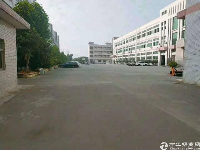 万江环城路旁原房东厂房出租12000平方租13元