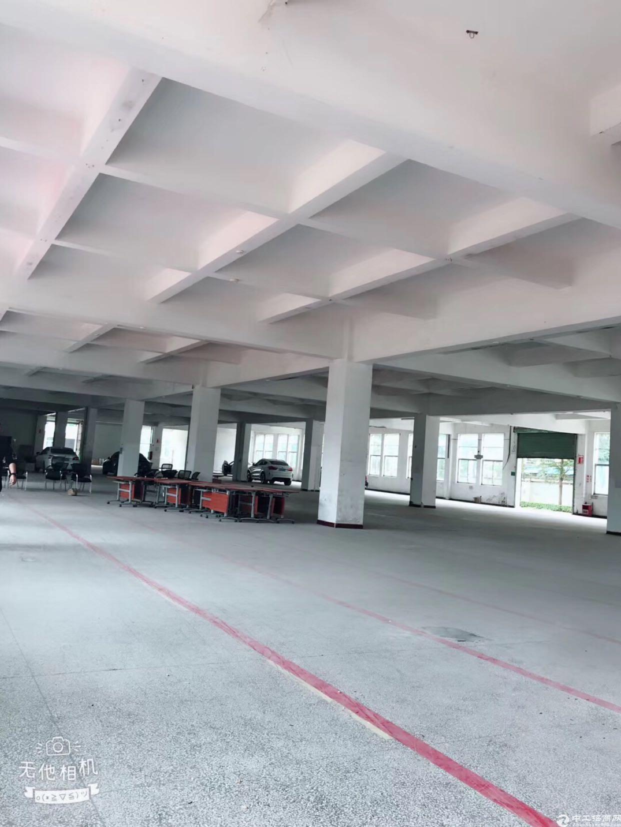 一楼高度七米,标准厂房,6000平方米招租