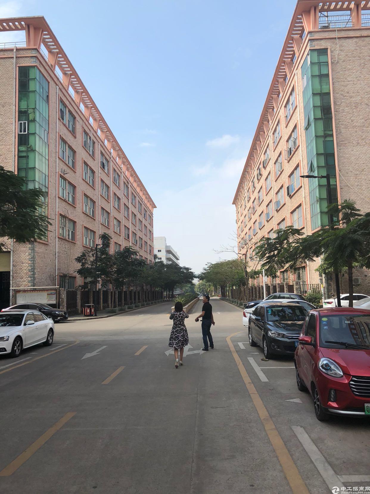 坪山坑梓原房东三楼2700平有红本500平起可分租