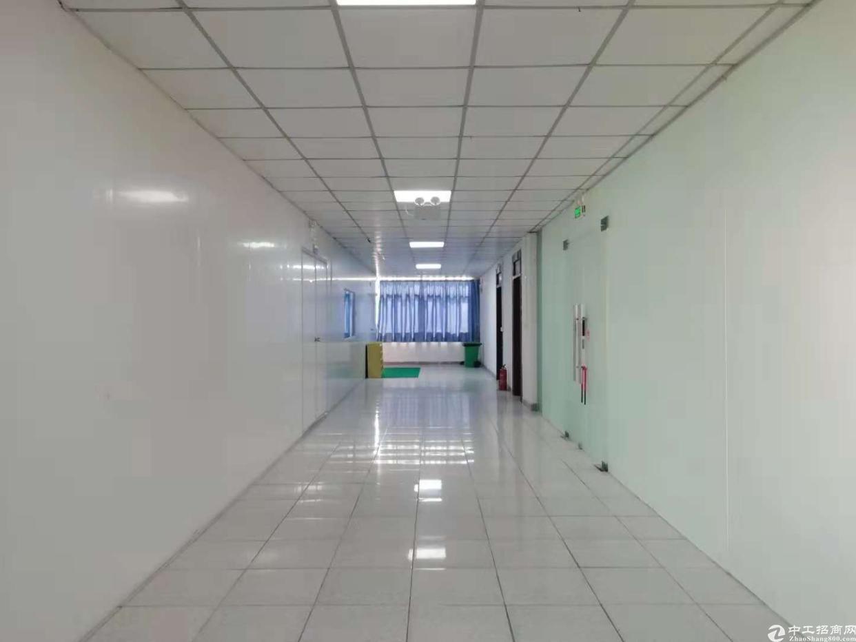 刚装修好的写字楼1500平方米可以分租
