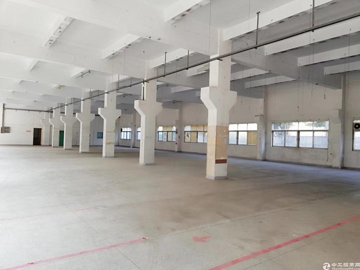 塘厦镇科苑城一楼1580平方出租