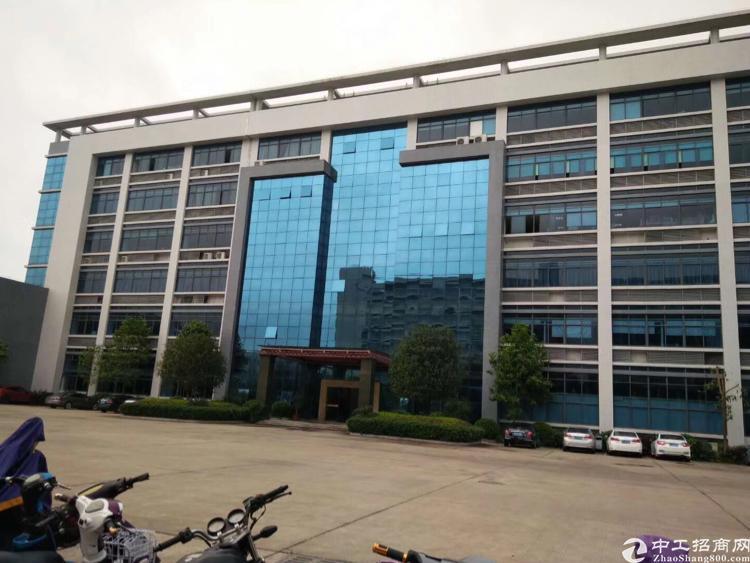 惠城区水口镇新出原房东标准厂房带红本独门独院带装修