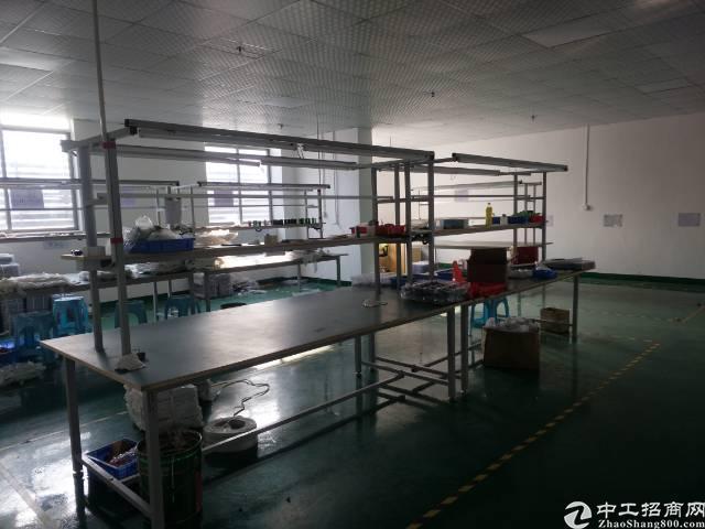 沙井107国道边300平方装修厂房招租